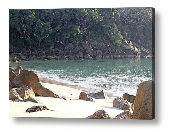 Nature Stress Relief - Ding Bay Beach Canvas Print