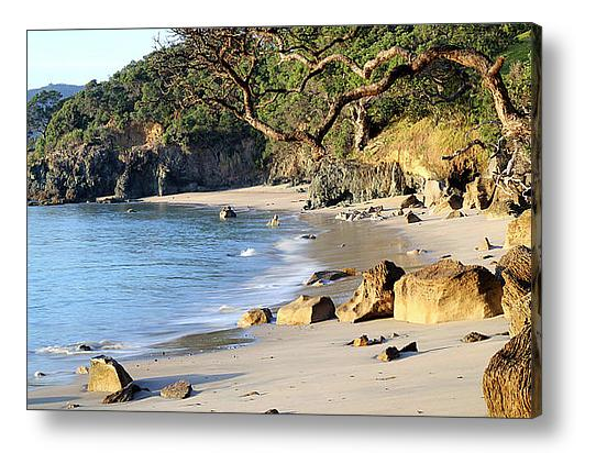 Nature Stress Relief - Langs Beach Canvas Print