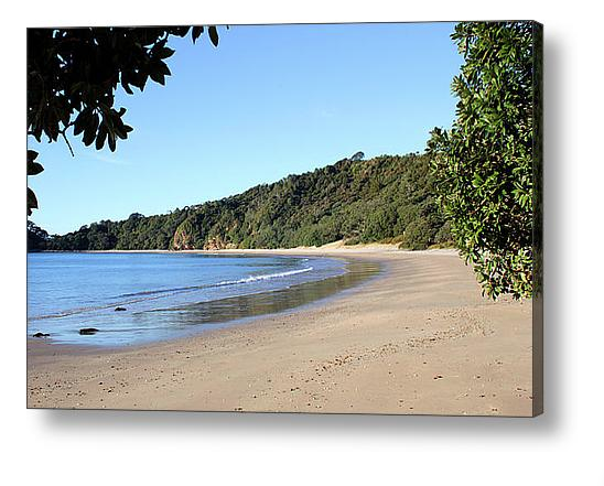 Nature Stress Relief - New Chums Beach Canvas Print
