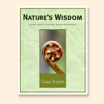 Nature Stress Relief - Nature's Wisdom by Cesar Iriarte - Book Cover