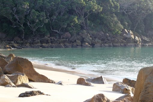 Nature Stress Relief - Ding Bay Beach
