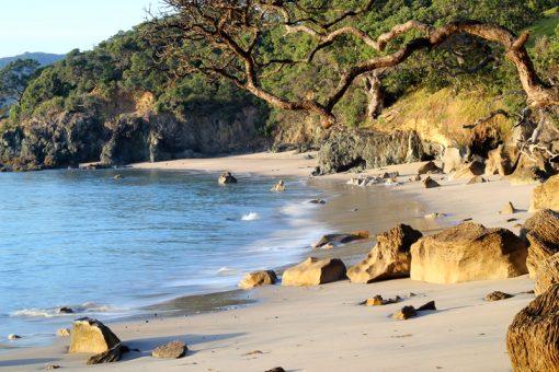 Nature Stress Relief - Langs Beach