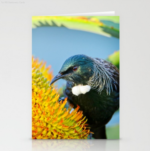 Nature Me Now - Tui & Friends